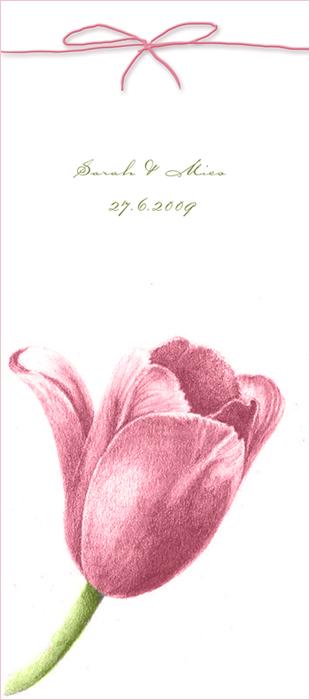 gallery_9935_38_57328.jpg